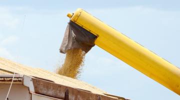 Brasil vê produção e exportação de soja recordes